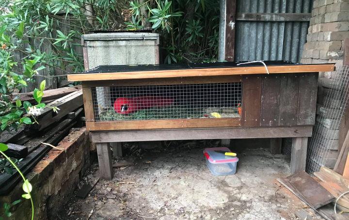 Australian guinea pig hutch