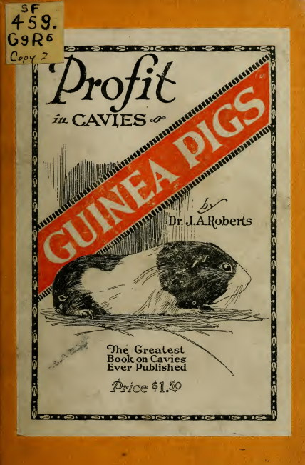 profit in cavies, old book about guinea pigs